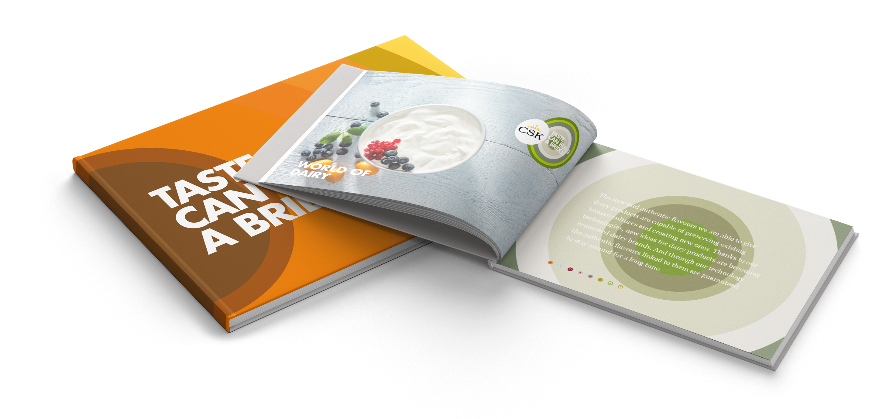 CSK - Brochure